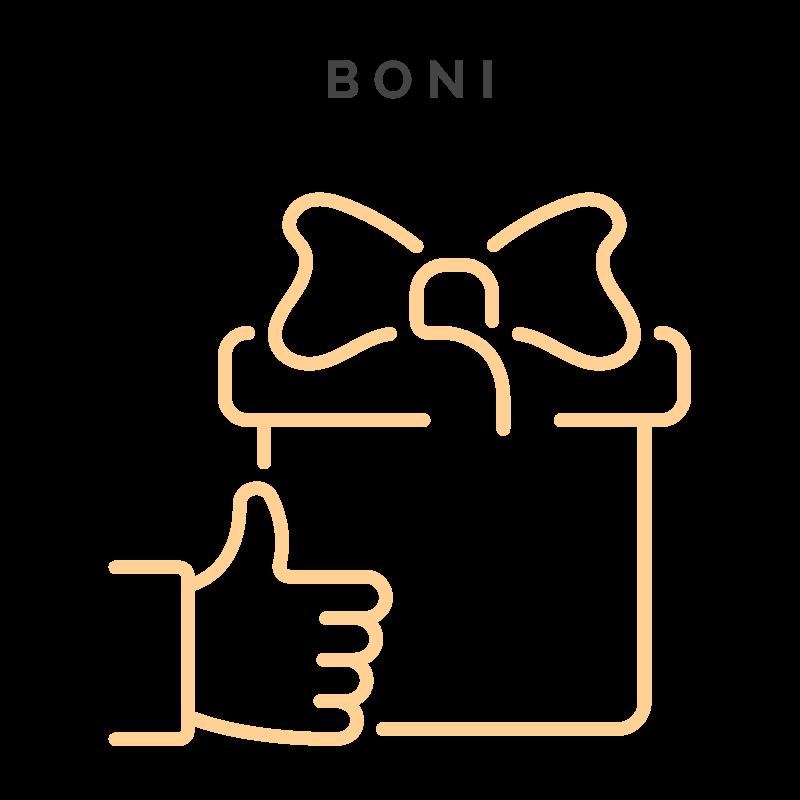 Boni - Story Kurs für Instagram